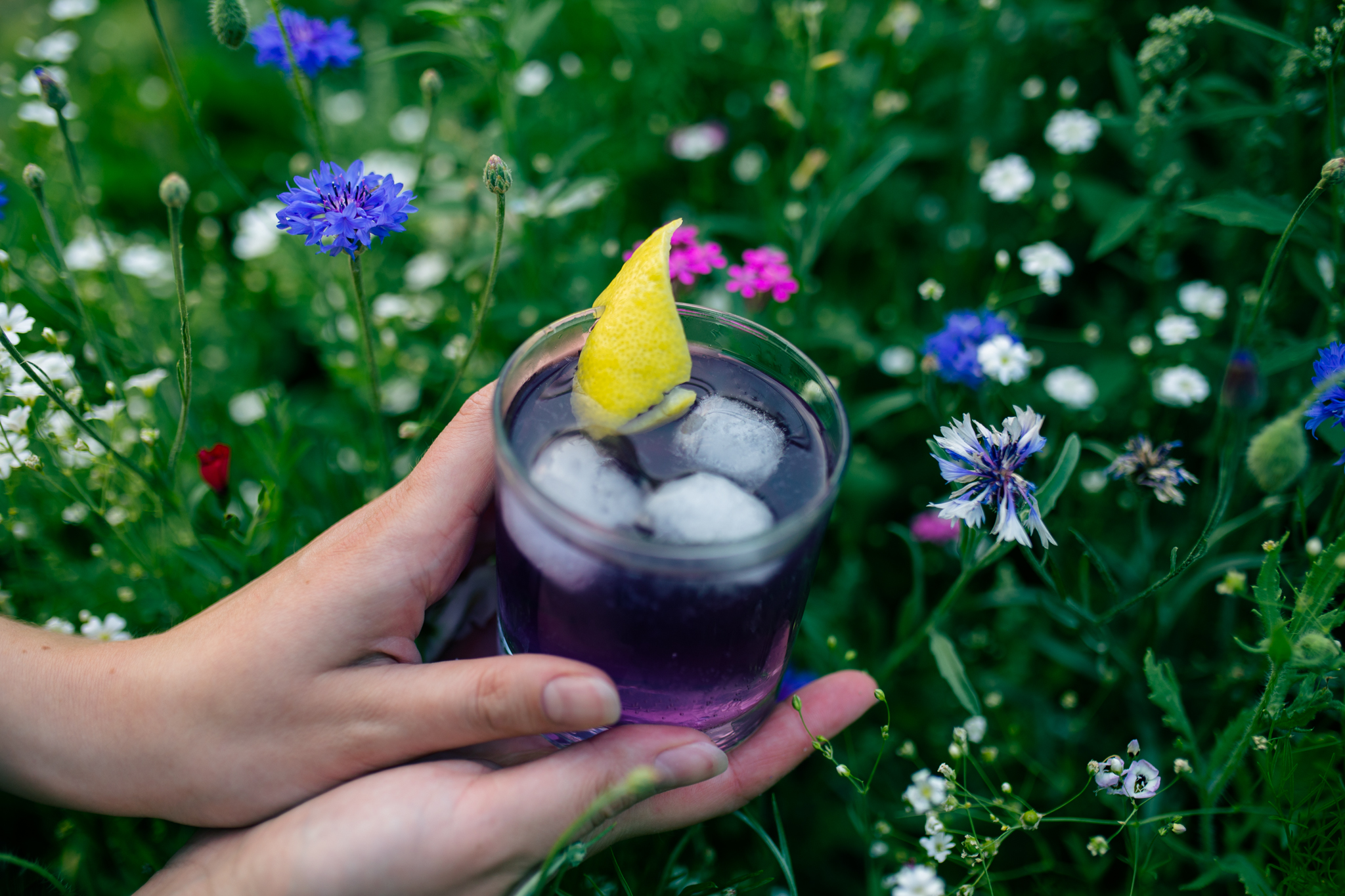This fruity and floral gin fizz is made with chamomile blue passionflower kombucha from Wild Tea Kombucha.