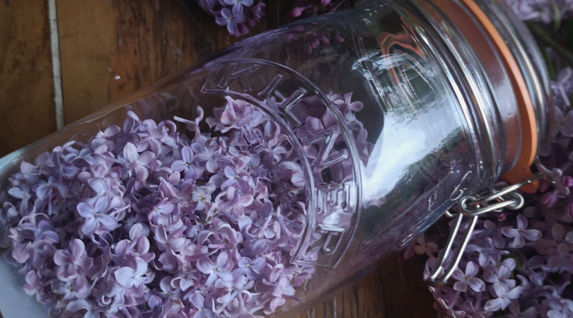 RECIPE: Lilac Infused Cream