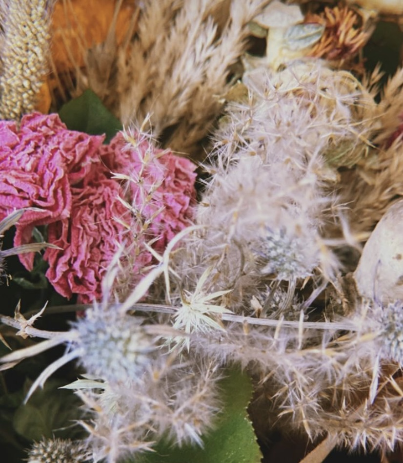 Dried bouquet of flowers from peaseblossoms
