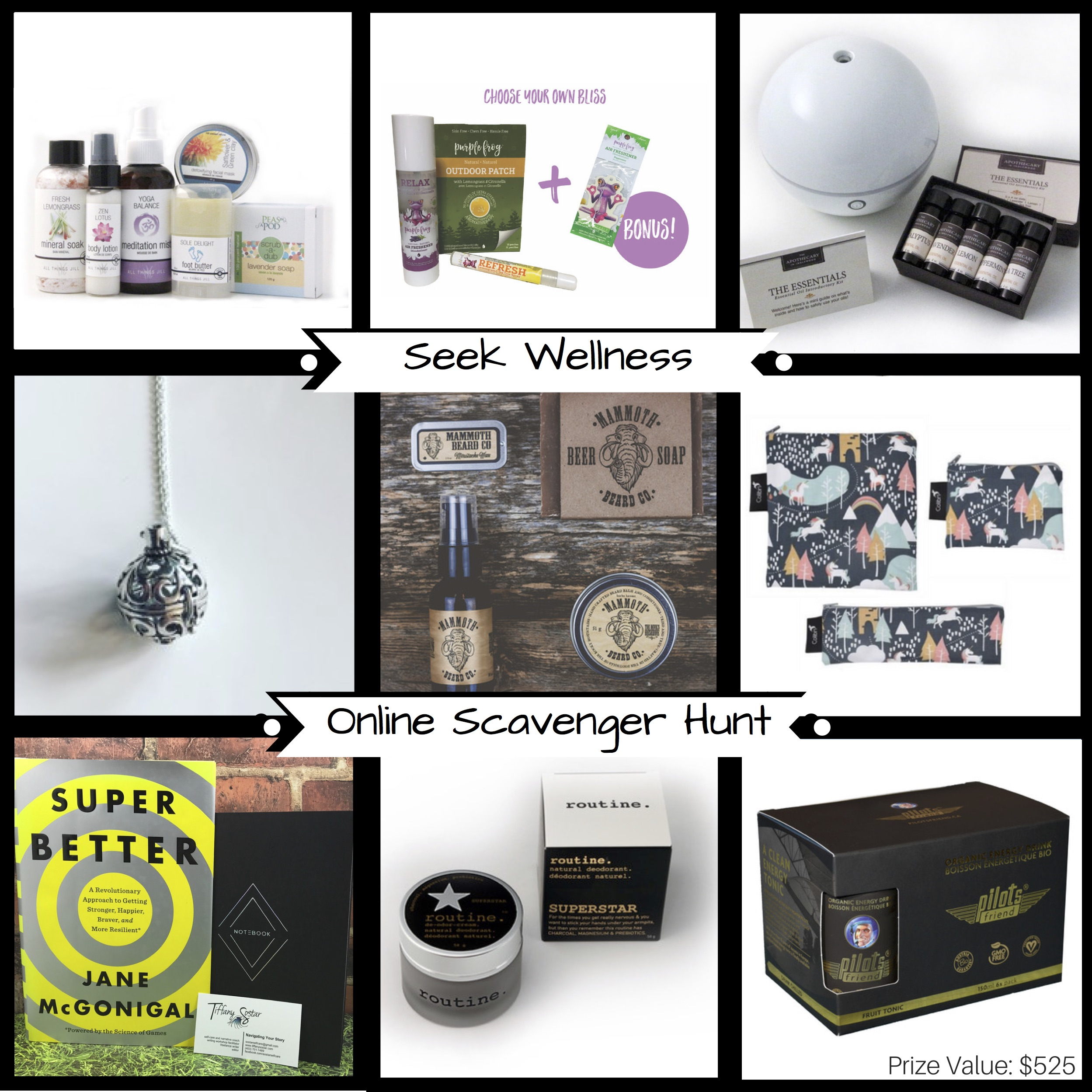 Seek Wellness Online Scavenger Hunt Prize Pack