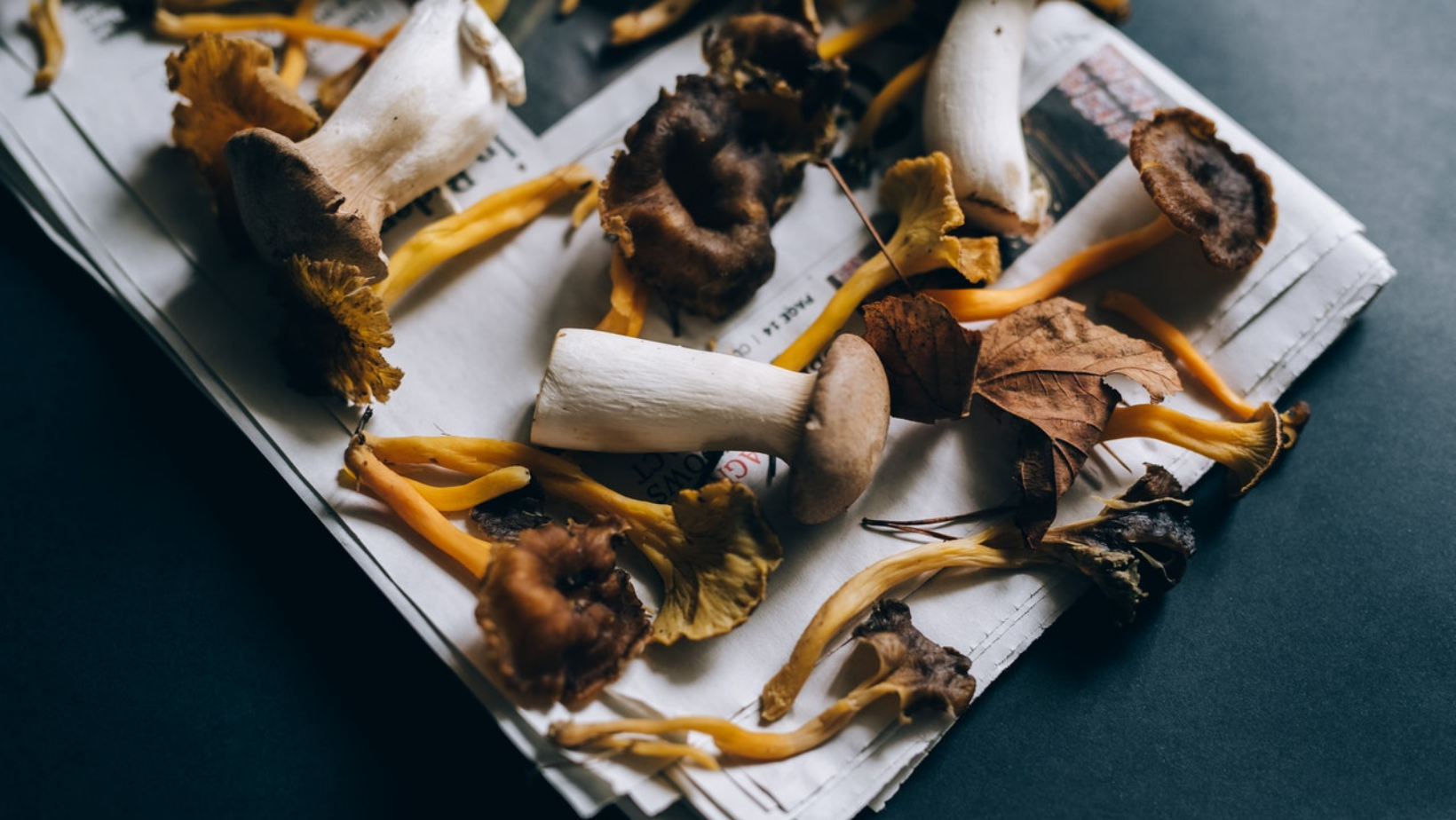 Simple Ways to Add Medicinal Mushrooms to Your Daily Routine