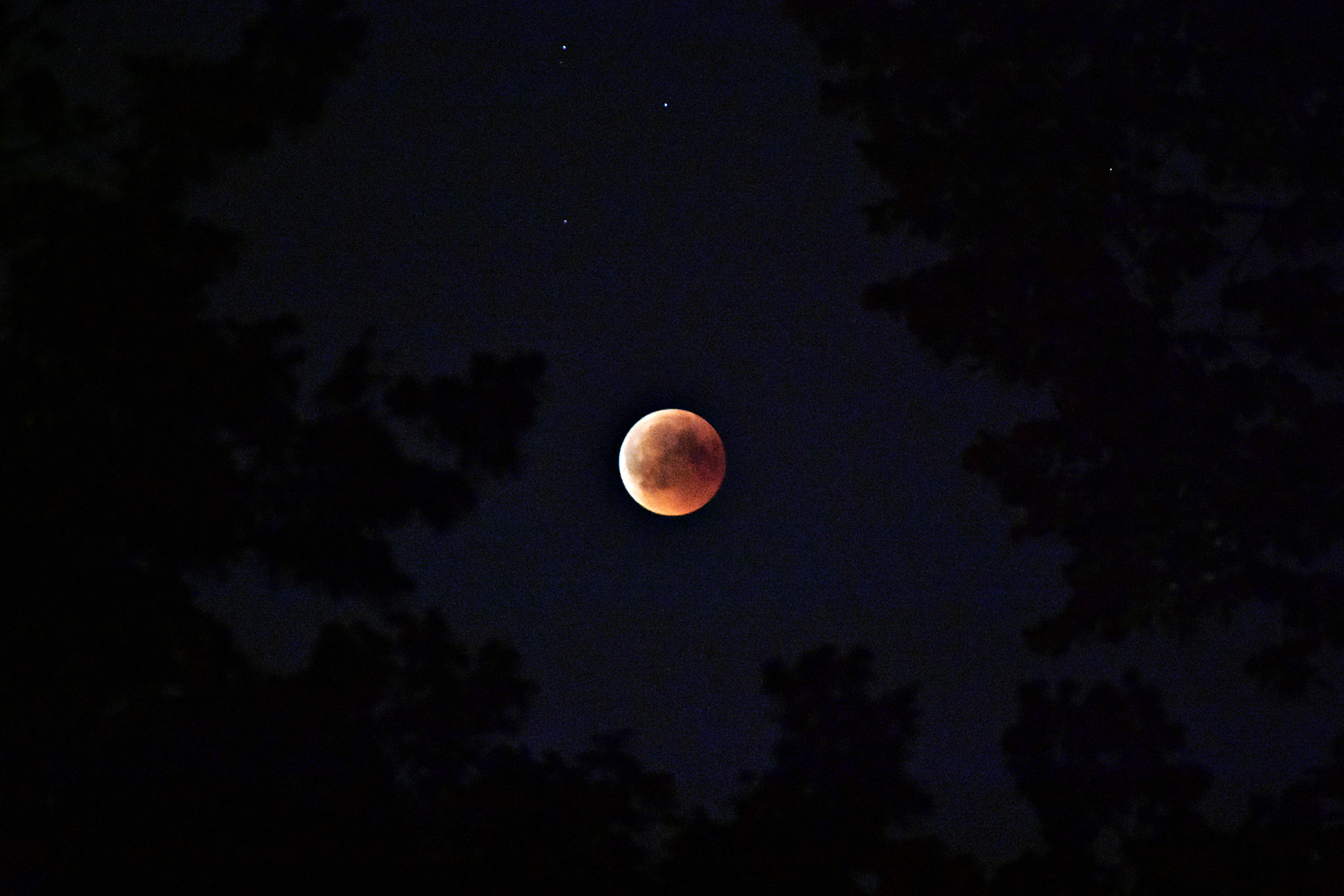 Essential Oils to Make The Most of The Super Blood Wolf Moon